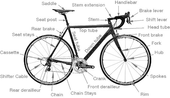 The basic parts of a bicycle. Not all bikes have all elements. Some have more, such as suspension.